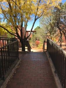 pathway-to-gi