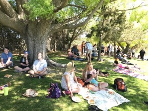 Staff, faculty, students, and families sit beneath the large shade trees and eat lunch sponsored by the Staff Association Council.